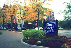 Shopping at Blue Back Square